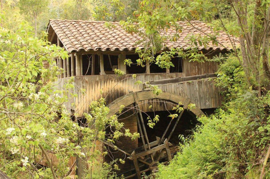 Molinos hidraulicos harineros de de Rodeillo y Pañul
