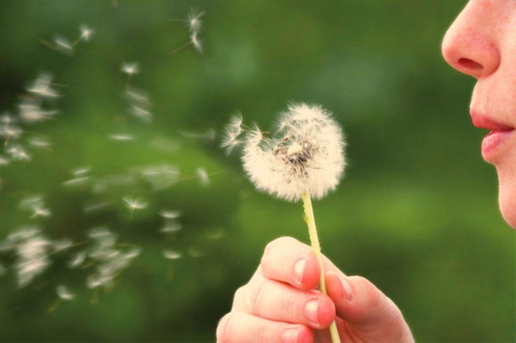 ¿Alergias? Consejos de un experto para combatirlas