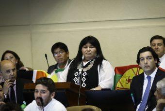 Dura interpelación a ministro Chadwick reveló más datos de la muerte de Camilo Catrillanca