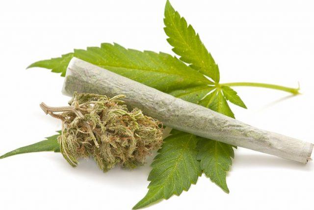 Peña explica su postura para liberalizar la marihuana y prohibir otras drogas