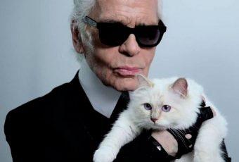 La gata de Karl Lagerfeld heredará 400 millones de euros