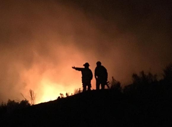 Decretan toque de queda en la provincia de Concepción por incendios forestales