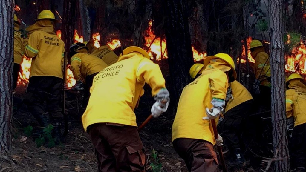 Ejército moviliza a más de 700 soldados para combatir incendios forestales en el sur del país