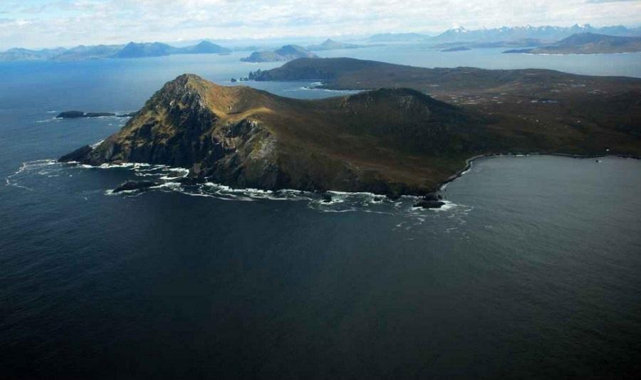ONG's alertan por expansión salmonera en la Patagonia y por visita de reyes de Noruega