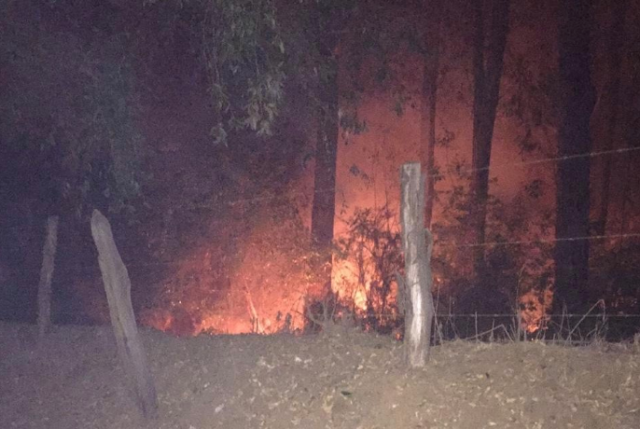 Patrulla militar detiene a 12 mapuche portando elementos para provocar incendios forestales
