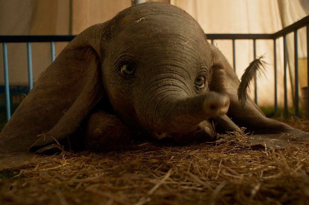 La verdadera historia de Dumbo