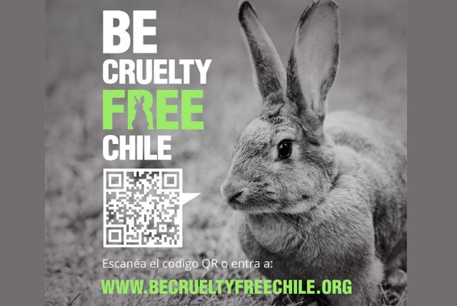 Eliana Albasetti, Neptune Keller y 80.000 chilenos exigen a la comisión de salud sumarse a #BeCrueltyFree