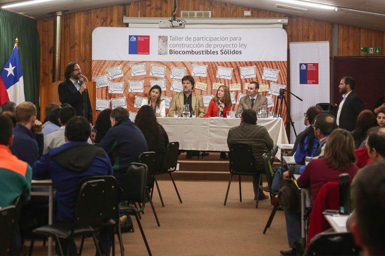 Más de 600 personas asistieron a talleres regionales por proyecto de ley de regularización de la leña