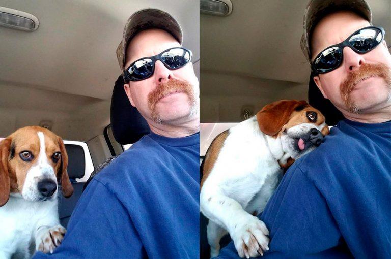 Beagle rescatado de un refugio estaba tan agradecido que le dio un abrazo a su nuevo amo