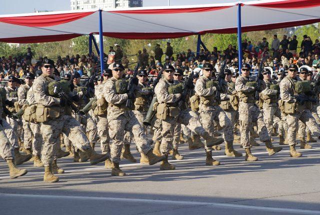 Cachorros en desfile militar inundan de ternura la red