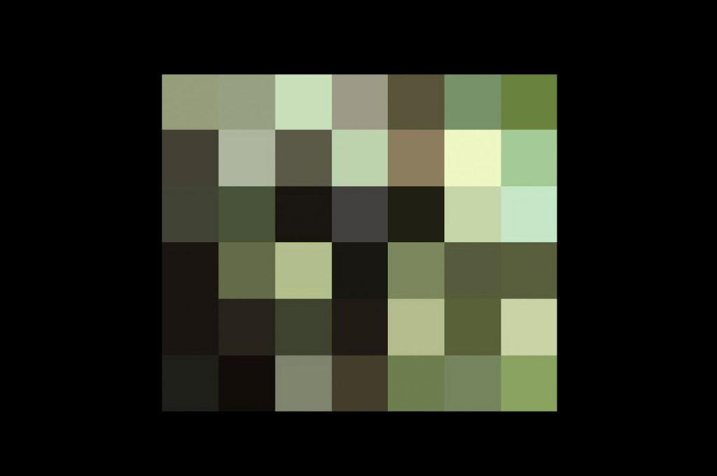 Estos pixeles representan la cantidad de animales de cada especie en extinción