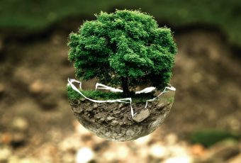¿Cómo ayudar al medio ambiente en estas Fiestas Patrias?