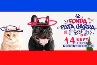 Mascotas podrán disfrutar su propia fonda en Providencia