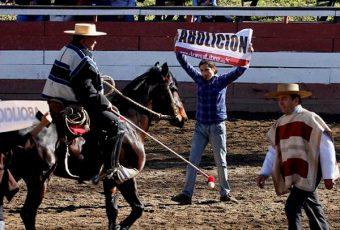"""Se inicia debate por proyecto de Ley que califica al Rodeo como """"Maltrato animal"""""""