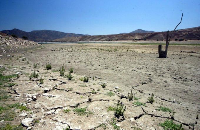 Los estragos del Cambio Climático en Chile: Informe oficial revela déficit hídrico llega al 80%