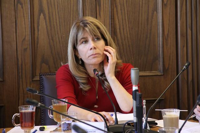 Senadora Rincón condiciona su voto a favor de la Reforma Tributaria a que ministro Larraín acceda a sus peticiones