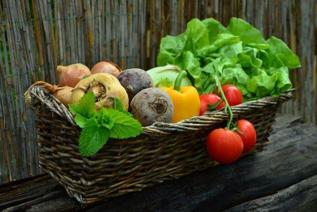 Solo el 15% de los chilenos come la cantidad recomendada de frutas y verduras