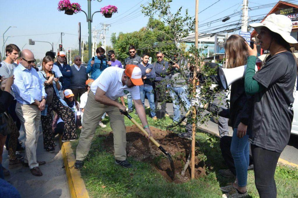 Automovilistas chilenos han donado más de 10 mil árboles nativos a campaña que busca mitigar efectos del cambio climático