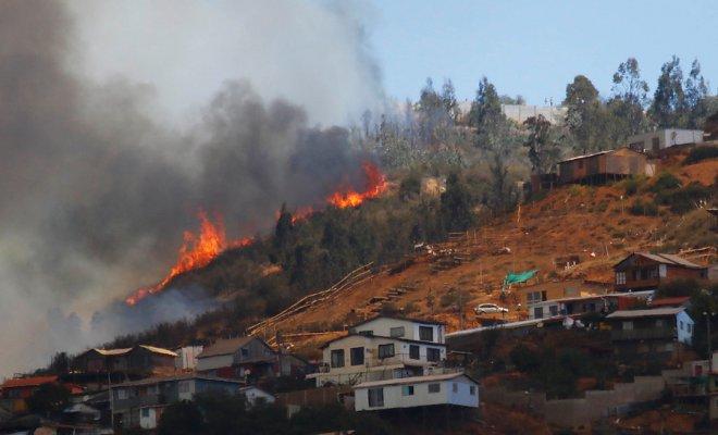 Ministro de Agricultura confirmó que incendios forestales de Valparaíso son investigados por fiscal exclusivo