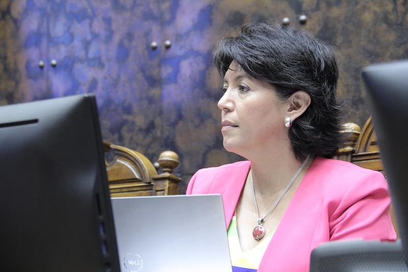 """Senadora Provoste critica duramente propuesta del Gobierno por nueva Constitución: """"Es una improvisación más"""""""