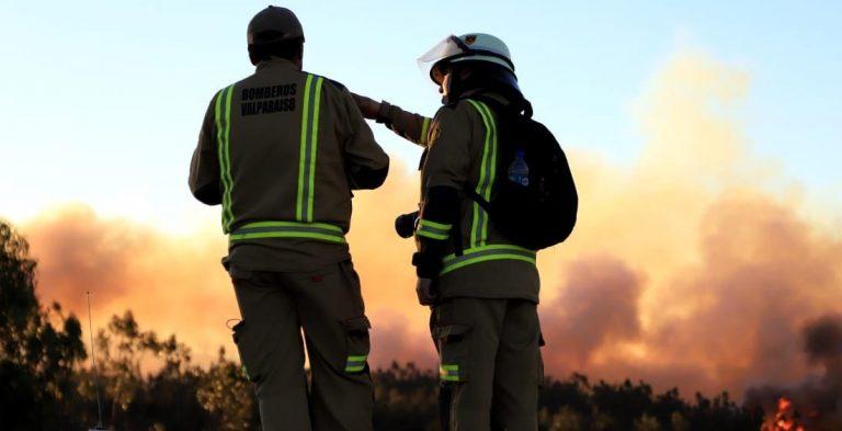 ONEMI informa sobre situación de Incendios Forestales en el país