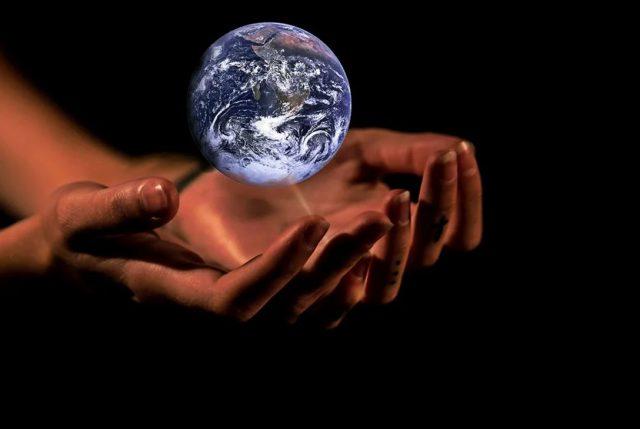 WWF Chile llama a participar en consulta ciudadana para actualizar compromiso climático