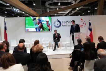 Debate entre plantaciones forestales y bosques nativos para la acción climática de Chile llegó a la COP25