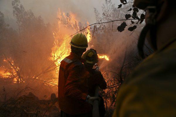 Ministro Walker asegura que incendio en Parque 7 Tazas está contenido