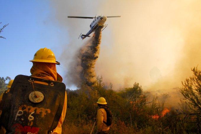 """Sigue la guerra contra el """"Cartel del Fuego"""": Ahora FNE acusa de colusión a tres empresas de helicópteros"""