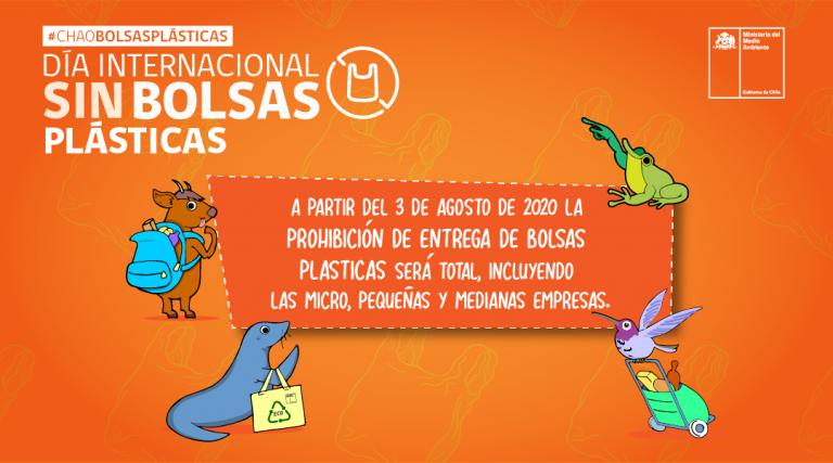 """Desde hoy Chile le dice """"Chaito"""" a las bolsas plásticas… aunque todo viene envasado en plástico"""