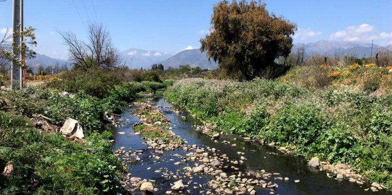 Por daño de Planta de Tratamiento de Aguas Servidas: Tribunal Ambiental exige a municipio de Olmué informes de Seremi de Salud