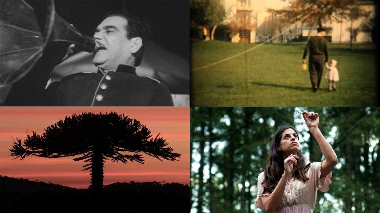 Cineteca Nacional estrena nuevos documentales y cine chileno On Demand