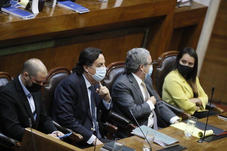 """Diputada PPD le manda recado al Senado por acusación contra Pérez: """"No hay espacio para amiguismos"""""""