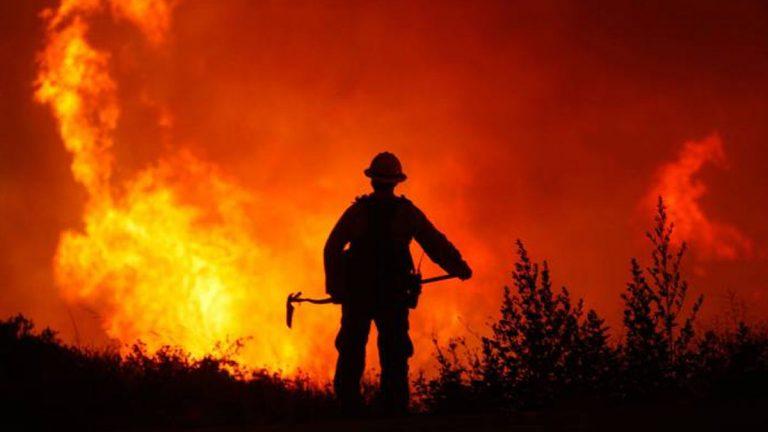Peñaflor toma la iniciativa lanzando campaña contra incendios forestales