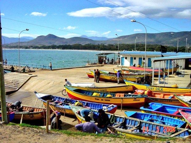 """Sernapesca da el vamos al Portal de la Pesca Artesanal en Chile: """"Caleta en Linea"""""""