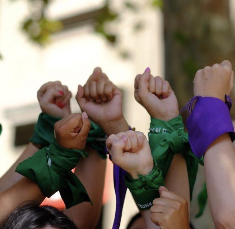 Diputadas PS se cuadran con proyecto para despenalizar el aborto