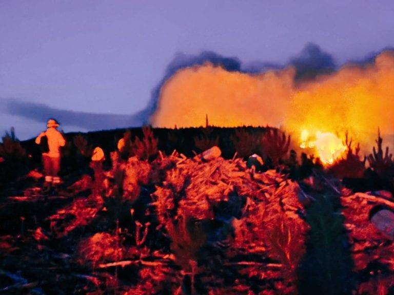 Onemi amplía Alerta Roja por incendio forestal en Nacimiento y Santa Juana y piden evacuación
