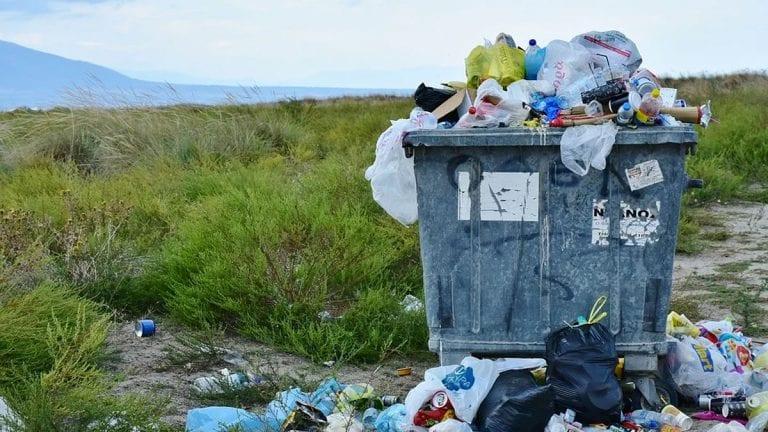 El agente más nocivo para el medioambiente es el ser humano