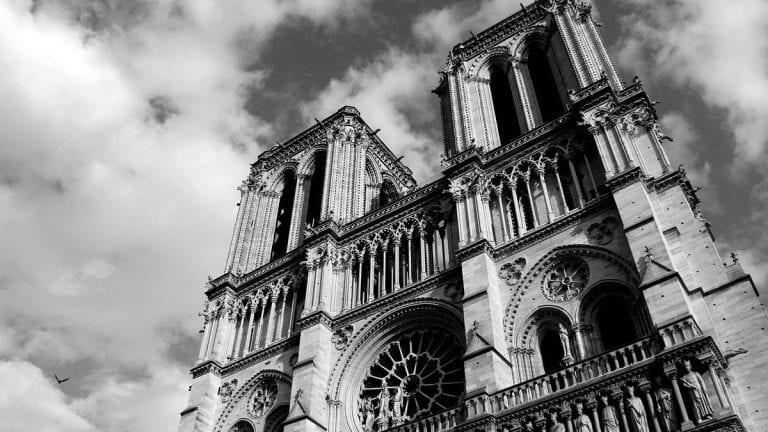Francia tala robles de más de 200 años para reconstruir Notre Dame