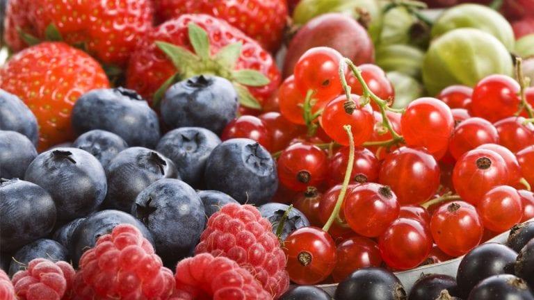 Hortifrut inaugura packing de arándanos más grande de Asia