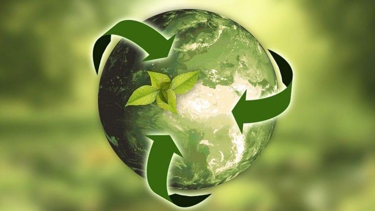 El reciclaje de residuos orgánicos en casa es una ruta para combatir el cambio climático