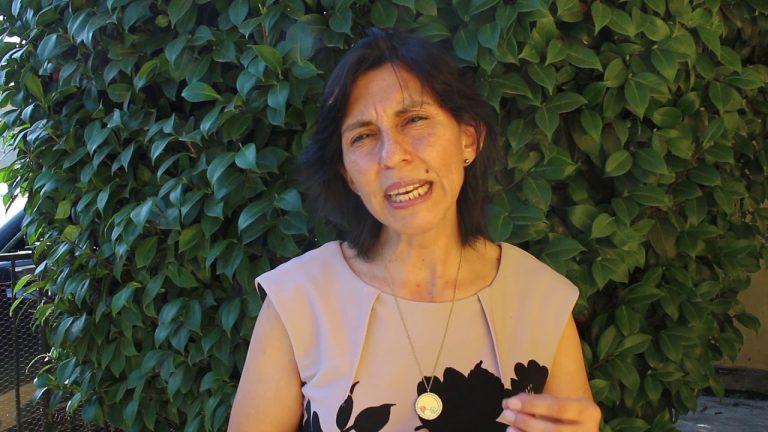 Loreto Vidal se convierte en la segunda convencional en renunciar a la Lista del Pueblo