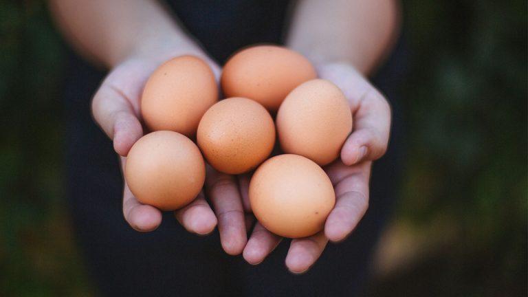 ¿Que buscan actualmente los consumidores de huevos?