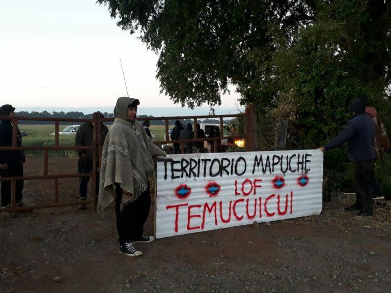 """Ministro Delgado por fallido operativo de la PDI: """"¿Qué quieren ocultar de las policías, de la justicia, qué ocurre allá adentro en Temucuicui?"""