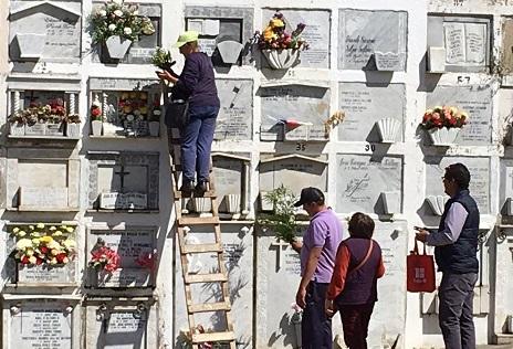Macabra denuncia: Familia viñamarina acusa hurto y exhumación de cadáveres en cementerio municipal