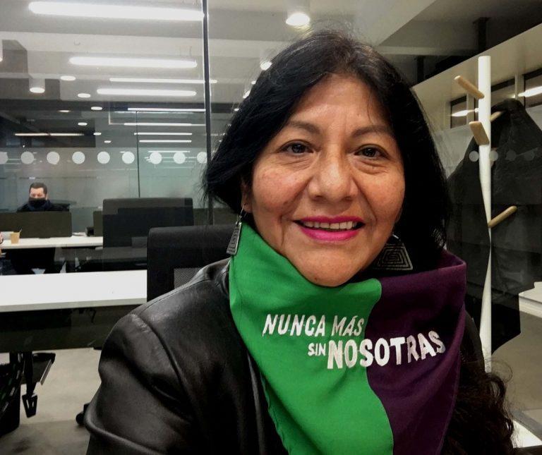 Convencional Alejandra Flores es partidaria de plebiscitos dirimentes para que, en temas controversiales, decida la ciudadanía
