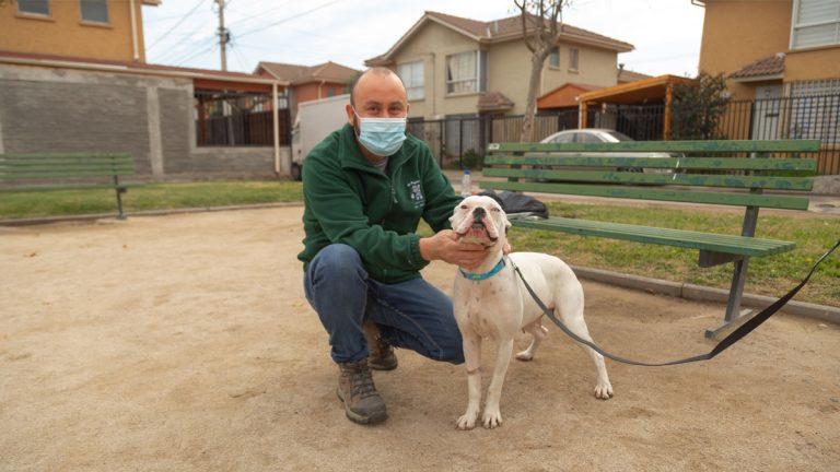 Fundación Huellas Unidas y Poema se unen en el rescate de animales