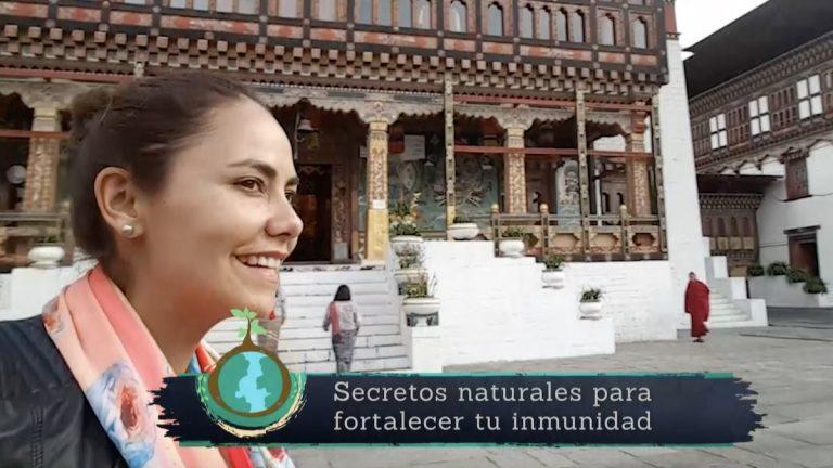 Secretos para Sanar conducido por Carola Bezamat alcanza en su debut 10.8 puntos de rating