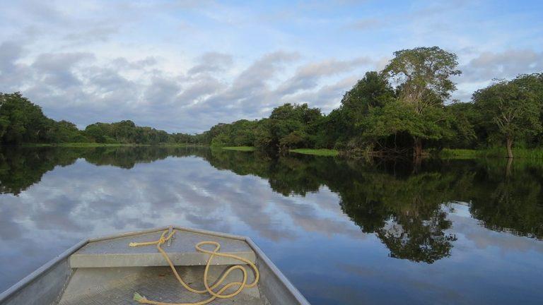 Seis curiosidades desconocidas sobre La Amazonía