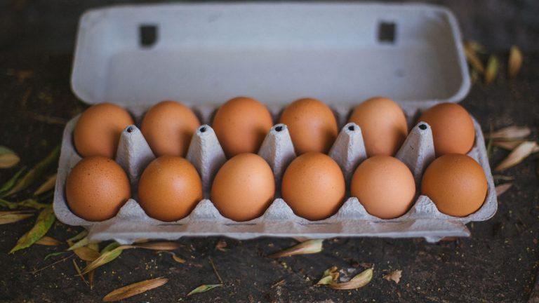 Día Mundial del Huevo: Los altibajos de una industria indispensable en Chile